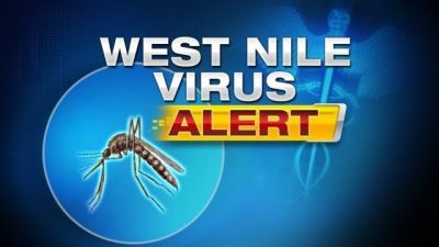 West Nile Virus Positive Bird Reported in Ford County